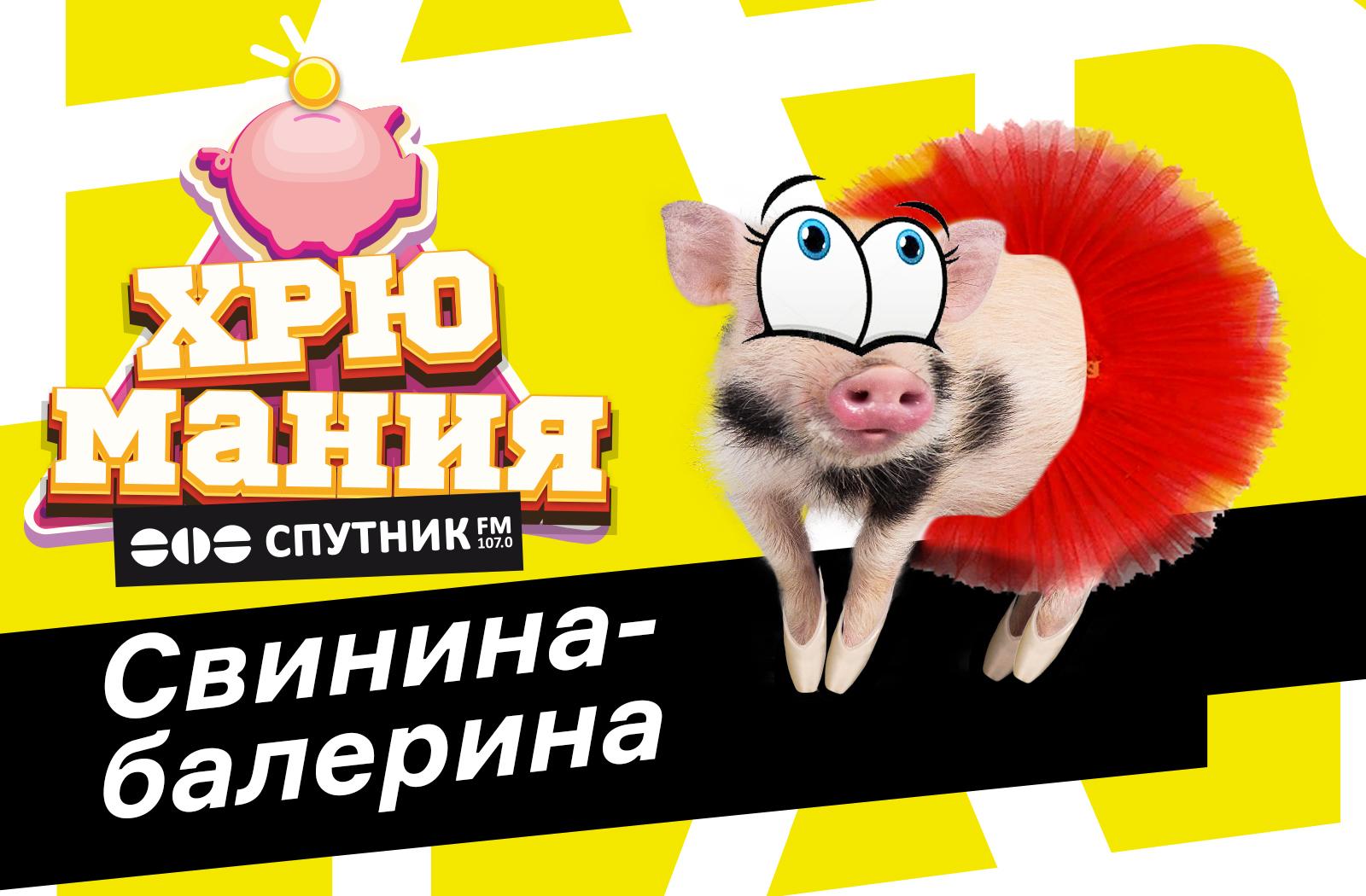 """Хрюмания"": свинина-балерина"