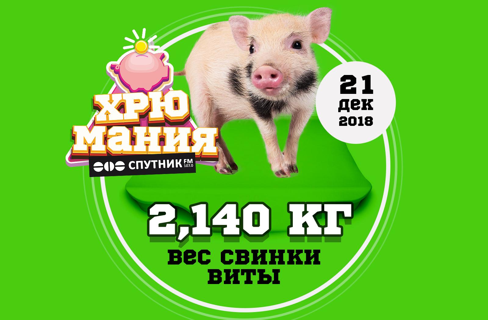 """""""ХрюМания"""": вес Виты 21 декабря"""